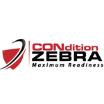 Social Media Portal interview with Drew Williams from Condition Zebra