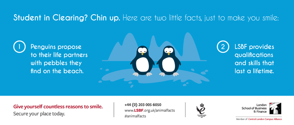 London School of Business and Finance Animal Facts campaign penguin image